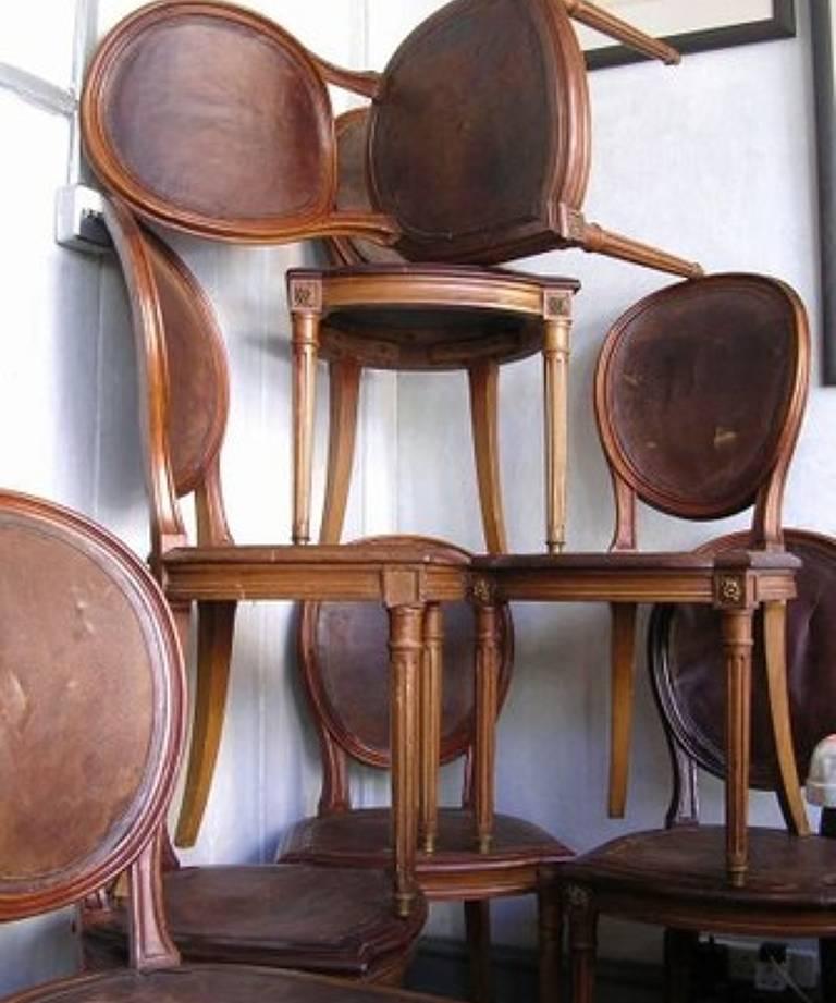 Set 8 walnut chairs