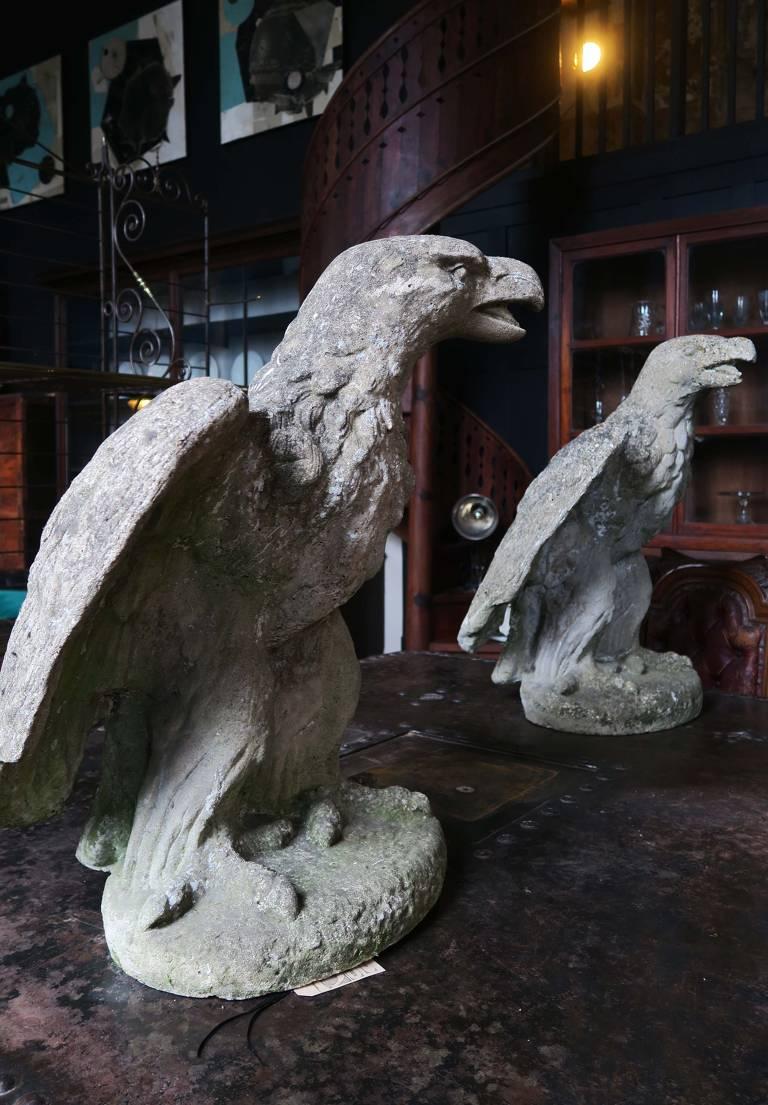 Pair of Stone Eagles c1900